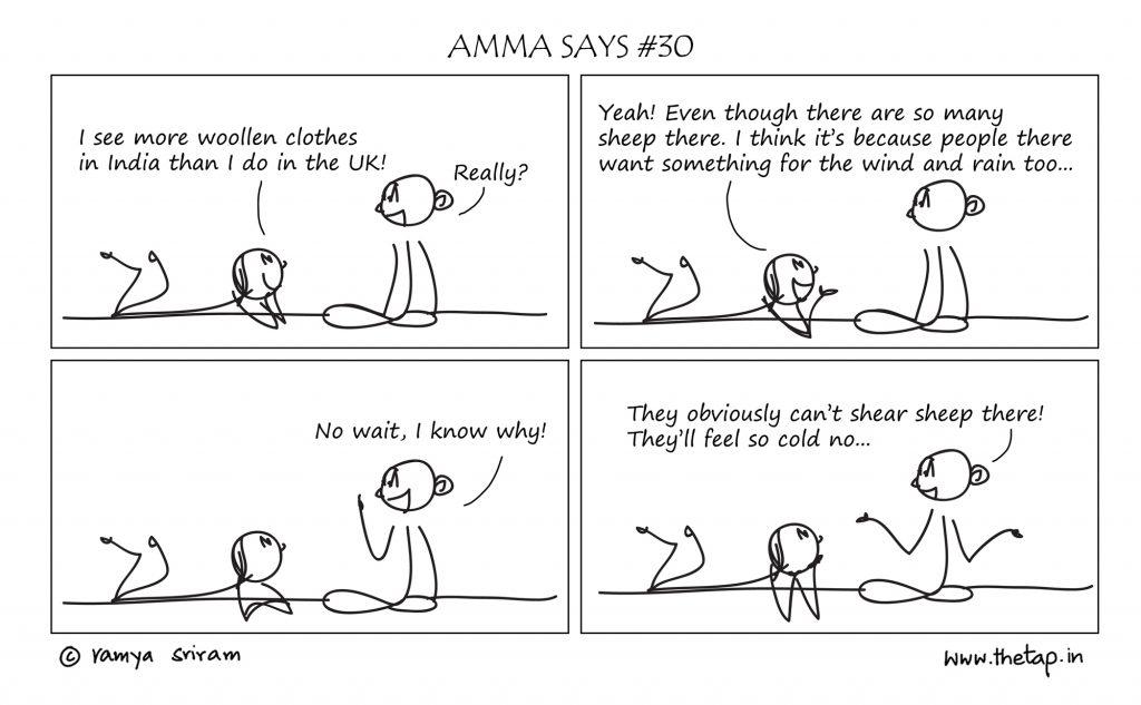 ammasays-sheep-small